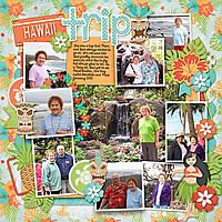 hawaii-trip.jpg