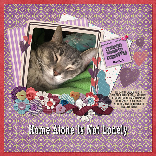 Home Alone Is Not Lonely