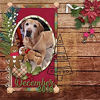 AYOB_Dec_2018.jpg