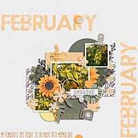 KumquatsFebruary2018.jpg