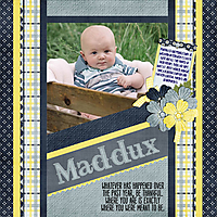 Maddux_in_Wagon.jpg