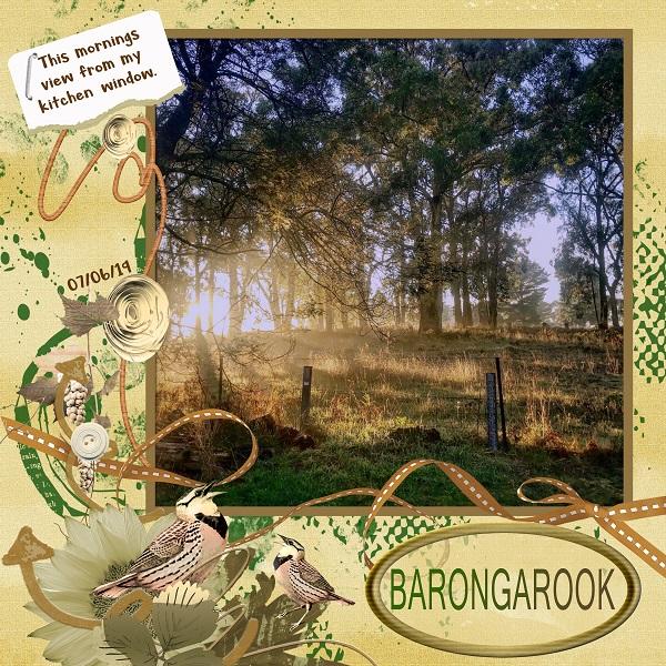 Morning View at Barongarook