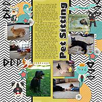 Pet_Sitting.jpg