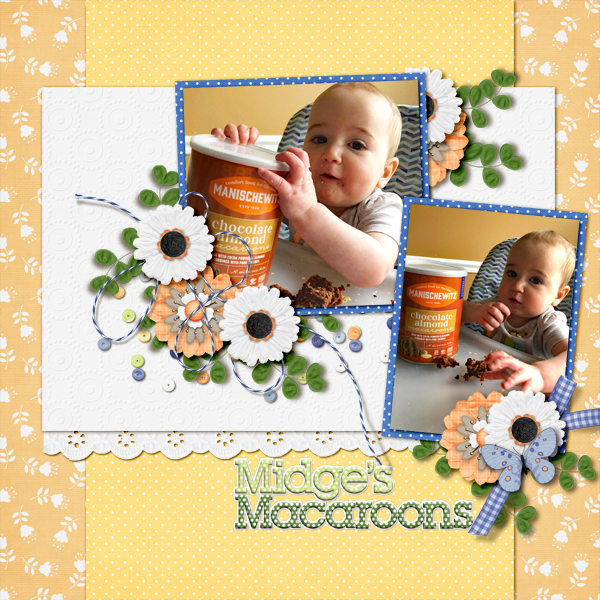 Midge's Macaroons