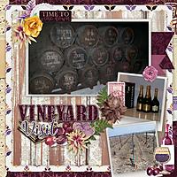 Vineyard_visit.jpg