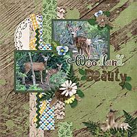 Woodland-Beauty-web.jpg
