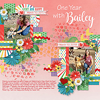 Bailey-One-Year-web.jpg