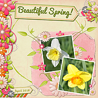 Beautiful_Spring.jpg