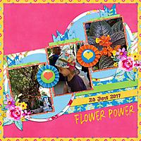 FlowerPower_06282017.jpg