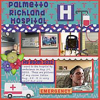 my_hospital_room_color_challenge_REMAKE.jpg
