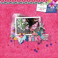 webv_at-the-flower-stand.jpg