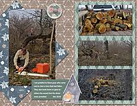 2018-Dec-wood2.jpg