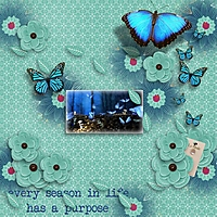 Blue-Butterflies-250.jpg