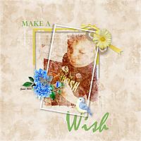 Make_a_Wish6.jpg