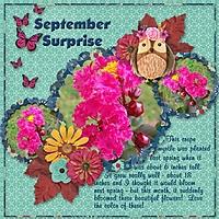 SeptemberSurprise_600_x_600_.jpg