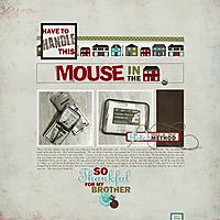2018_07-07_Mouse_lr.jpg