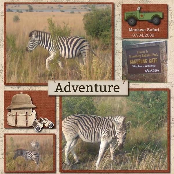 2009 Zebra Adventure