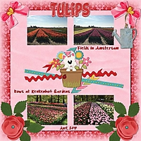 Tulips_11.jpg
