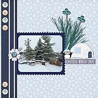 WinterDays_1.jpg