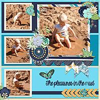 The-pleasures-in-the-mud.jpg