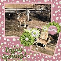 Enjoy_Spring.jpg