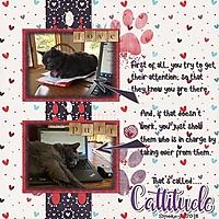 Cattitude_1.jpg