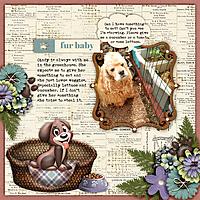 Fur-baby2.jpg