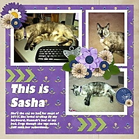 ThisIsSasha.jpg