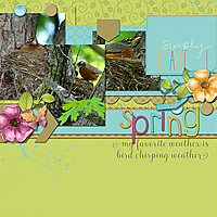 birdchirping_web.jpg