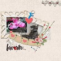 web_favorite-things.jpg