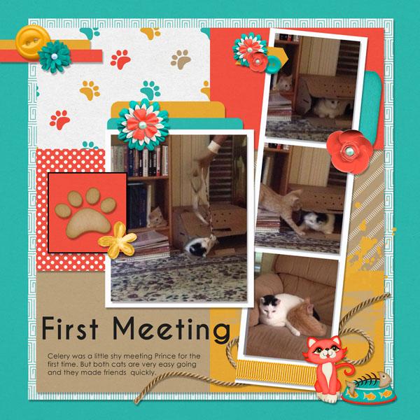 0618 Mini kitties meet