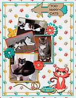 4_cats_small.jpg
