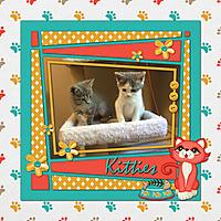 Kitties4.jpg
