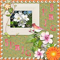 Spring79.jpg