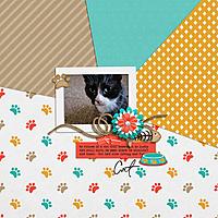 SwL_5_18MISTemplate-keley-kittycat.jpg