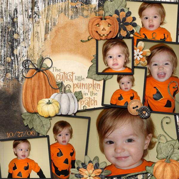 Cutest Pumpkin the Patch