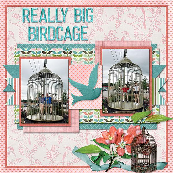 Birdcage 2017