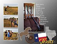 Texas_gun_small.jpg