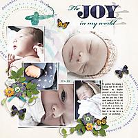 The_Joy_In_My_World.jpg