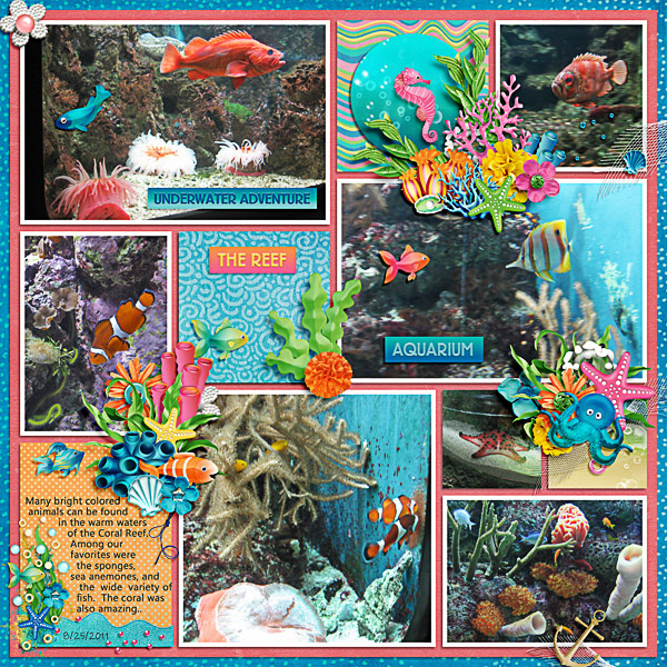 The Coral Reef at the Aquarium