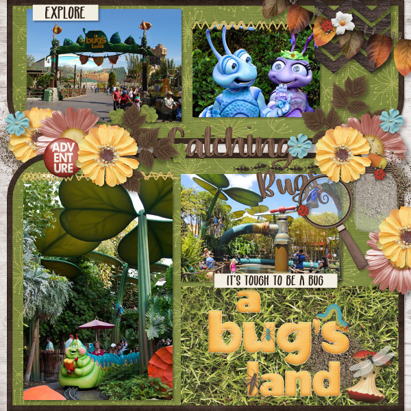 Catching Bugs - A Bug's Land