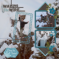 Walking-the-Wire-web.jpg