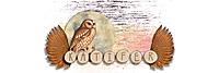 Owl-Siggy2.jpg