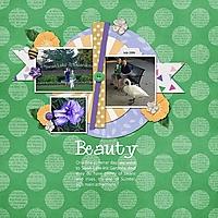 Beauty37.jpg
