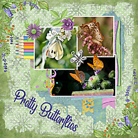 Pretty_Butterflies.jpg