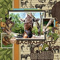 Sacramento_Zoo.jpg