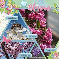 Spring-Blossoms-web.jpg