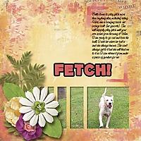 fetch_600_x_600_.jpg