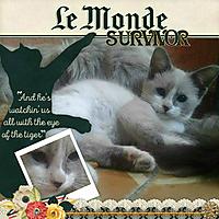 Survivor_Eye_of_Tiger.jpg