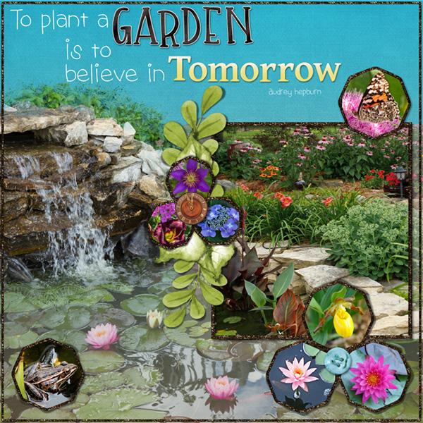 Week-4-my-sanctuary-is-my-garden